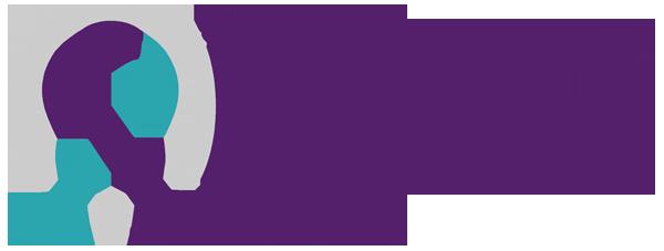 Domestic Violence Coordinating Council logo